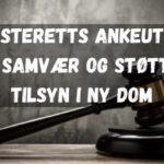 Høyesteretts ankeutvalg om samvær og støttet tilsyn i ny dom