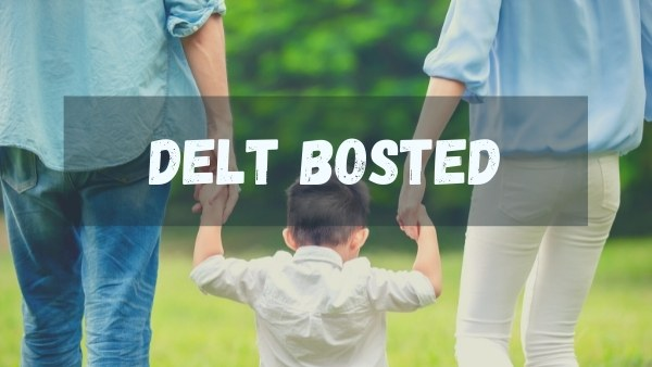 Delt bosted